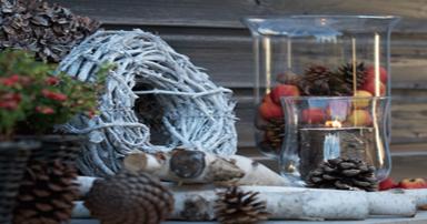 tuintips-kraaij-wintertuin-december-384-x202