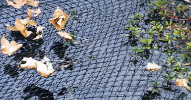 tuintips-kraaij-plastic-net-over-vijver-september-384-x-202