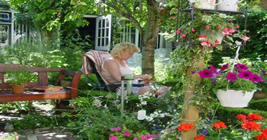 tuintips-kraaij-tuin-juni-384-x-202