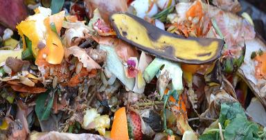tuintips-kraaij-tuinafval-compost-september-384-x-202